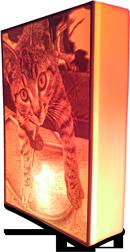 Fotolamp met een kat als afbeelding; by QbigDesign
